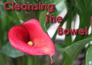 Bowel Cleansing