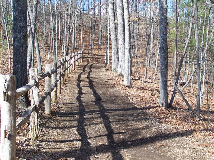 Trail with fence sm